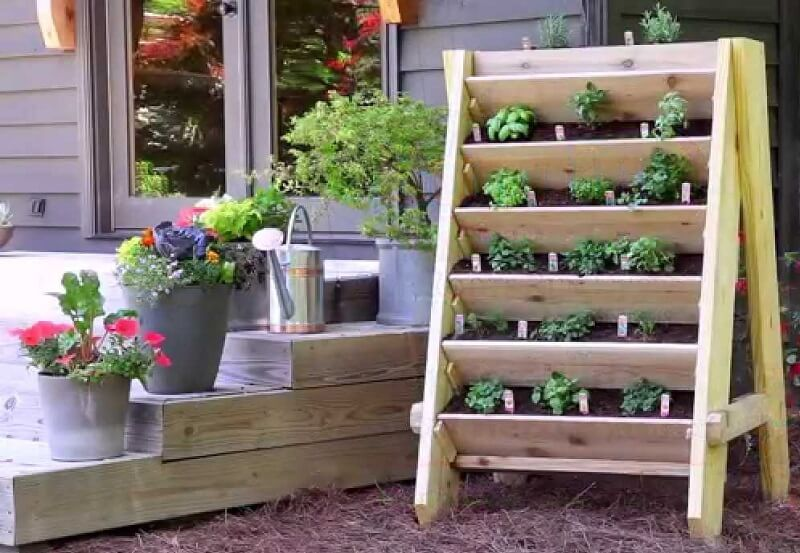 Shelves vertical garden