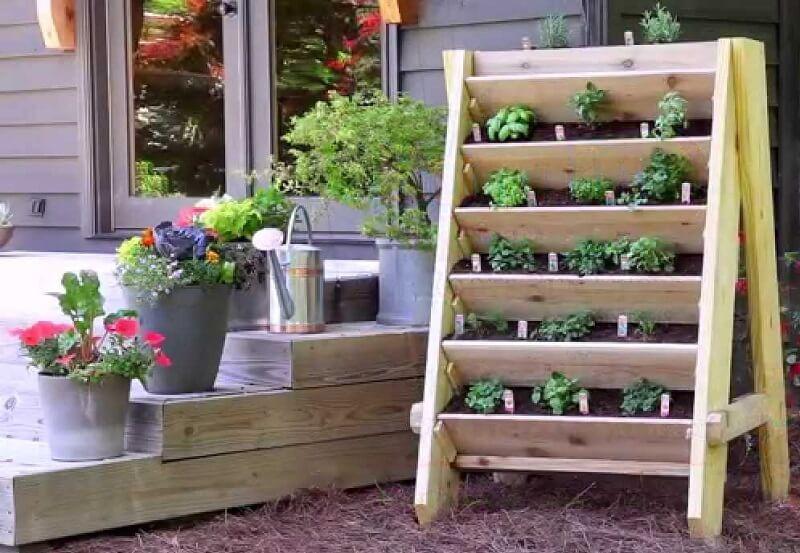 Shelves vertical garden