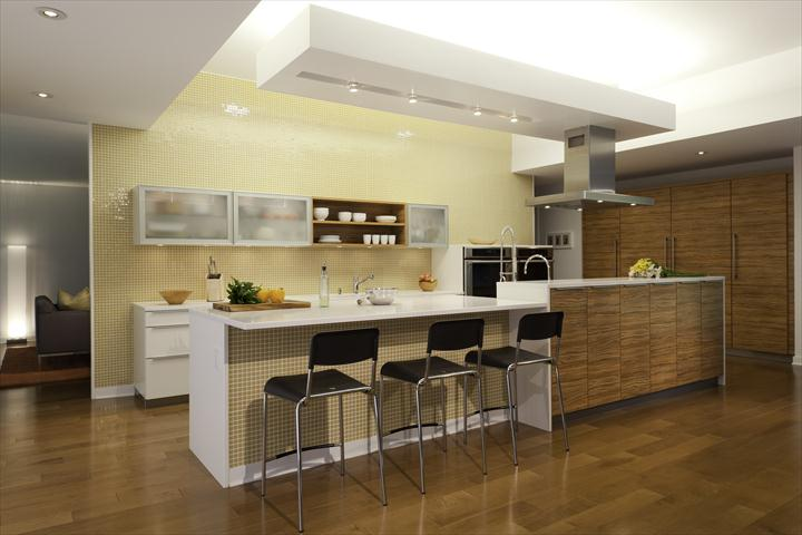 Modular Kitchen 6