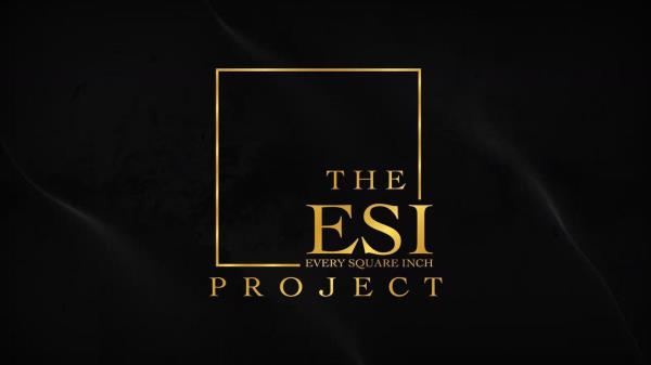 The ESI Project